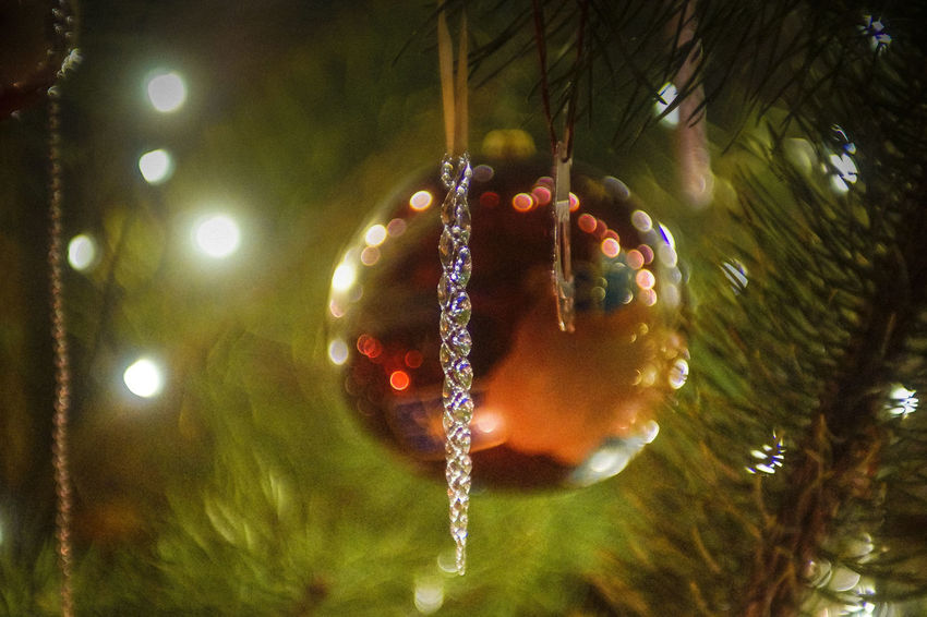 Merry Christmas Celebration Chirstmas Tree Christmas Christmas Christmas Decoration Christmas Decorations Christmas Lights Christmas Lights Christmas Ornament Christmas Tree Close-up Hanging Indoors  Minolta50mmf14 Night No People Pine Tree Vintage