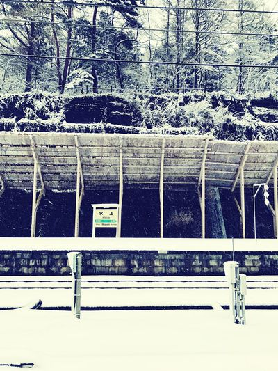 Minakami station in Gunma, Japan Winter Cold Temperature Snow Tree Weather Day Nature Frozen No People Outdoors Built Structure Bare Tree Architecture Beauty In Nature Close-up Water Station Japan Railways JREast EyeEmNewHere
