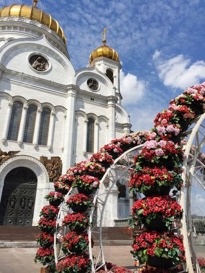 Cathedral Of Christ The Savior Russia Architecture Religion Built Structure Place Of Worship Spirituality Outdoors Day Flower Low Angle View No People Sky
