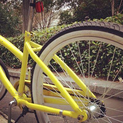 Yellow Bike. #jomo #iphoneography #neworleans IPhoneography Jomo Neworleans