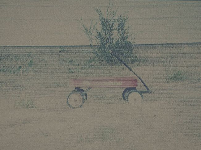 Redwagon Wagon  Red Kidtoys Check This Out Hello World Walking Around Town Milenamulskephotography Followplease Weeds Abandoned Radio Flyer All Alone EyeEm Best Shots Comment Hi! Abandoned Things Taking Photos