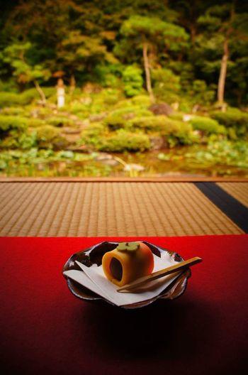 Red Close-up Japanese Sweets Ceremony Okashi Shrine Japan Photography Japanese Culture Tatami EyeEmNewHere EyeEmNewHere