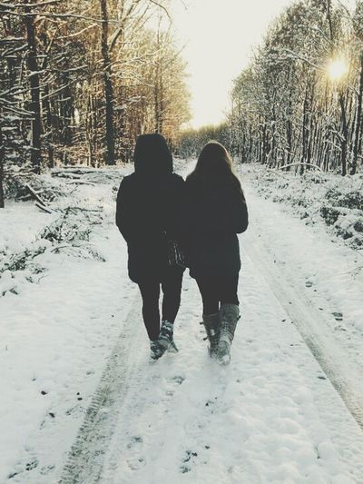 Snow Winter Wonderland Wintertime Cold Winter ❄⛄