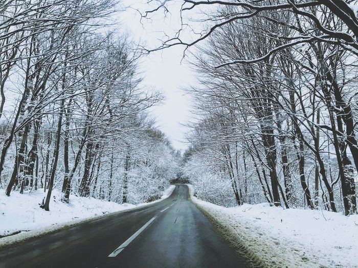 The Way Forward Road Snow Winter Cold Temperature Transportation Nature Bare Tree Diminishing Perspective Weather Day Tree Outdoors Tranquility No People Tranquil Scene Beauty In Nature Shades Of Winter The Great Outdoors - 2018 EyeEm Awards