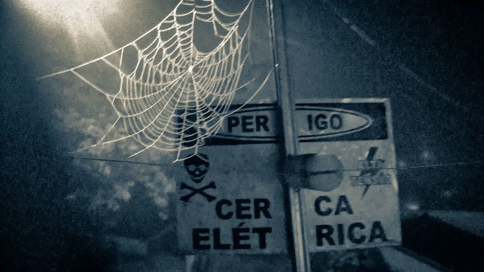 No People Textured  Close-up Indoors  Night Night Lights Text EyeEm Selects EyeEmNewHere Brazil Nature Insect Spider Spider Web Spiderweb Wet Cold Caution Sign Caution
