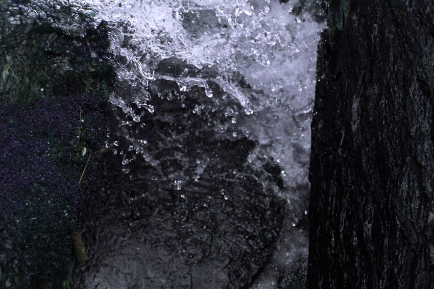 Beauty In Nature Close-up Day Motion Nature No People Outdoor Photography Outdoors Textured  Tree Water Waterfall Go Higher
