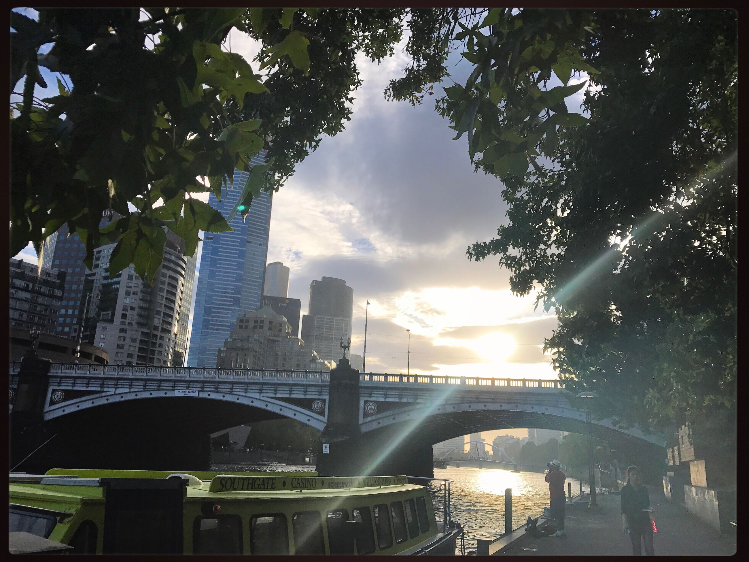 city, travel destinations, architecture, tree, travel, cityscape, sunset, outdoors, modern, skyscraper, urban skyline, sky, no people, day