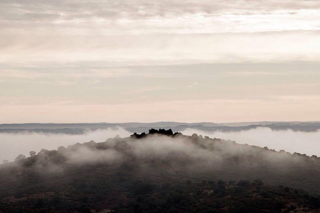nature, fog, beauty in nature, mist, hazy, scenics, tranquility, tranquil scene, foggy, landscape, no people, idyllic, remote, outdoors, tree, sky, mountain, day, sunset