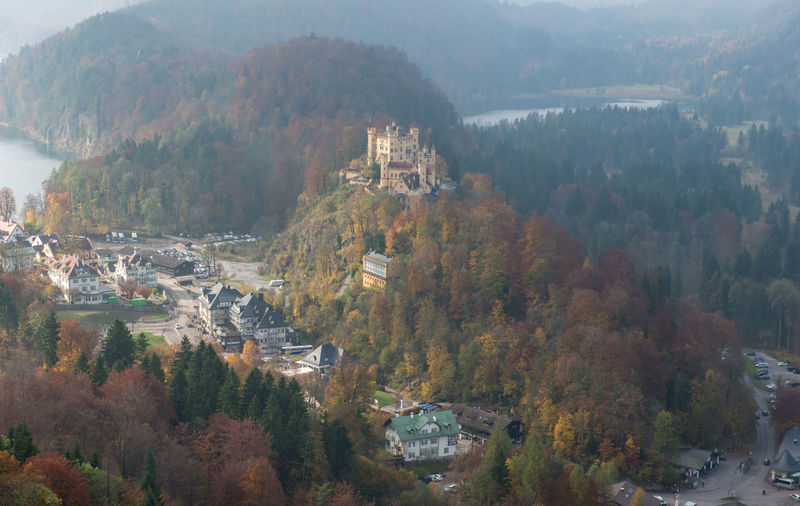 Hohenschwangau Castle with Autumn colors, Fussen, Germany Tree Plant Architecture Mountain Nature Building Exterior High Angle View Built Structure Day Scenics - Nature Beauty In Nature Fog No People Growth Outdoors Tranquil Scene Autumn Building City Change