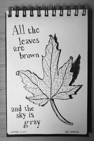 California dreamin Leaf Autumn Fall Drawing Sketch Sketchbook Fountain Pen Ink Illustration