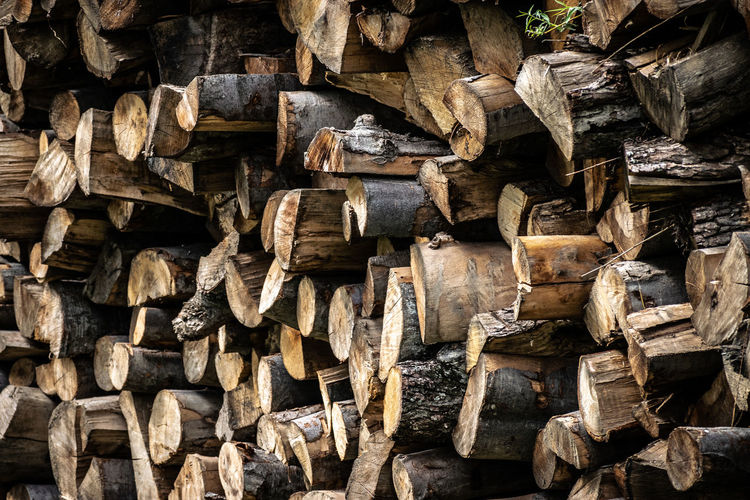 A pile of cut wooden logs used as fuel to heat a house and as firewood.