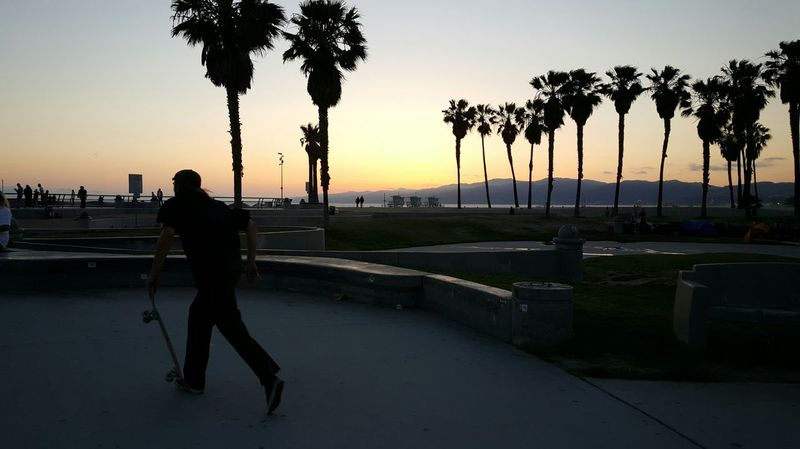 Skateboarder Sunset Venice Beach, Calif Southern California Dusk Sunset_collection Sunset Silhouettes Beachlife Skatelife S6 The Purist (no Edit, No Filter) Enjoying Life :) EyeEm Gallery Eyeemphotography EyeEm EyeEm Best Shots - People + Portrait The Street Photographer - 2016 EyeEm Awards Live For The Story