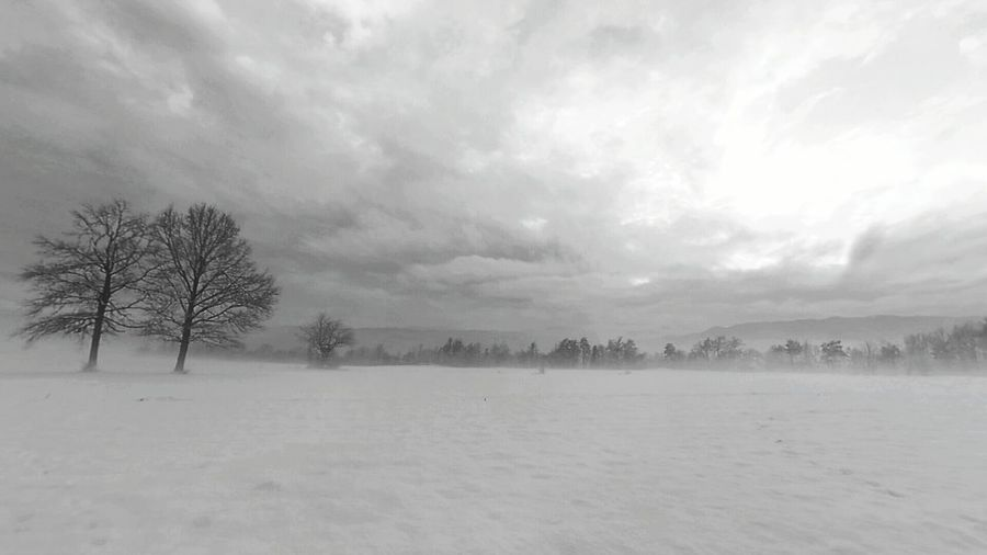 Bled, Slovenia Winter Landscape_photography Landscape Nature Beautiful Nature Nature_collection Nature_perfection Beauty In Nature The Places I've Been Today The Great Outdoors - 2016 EyeEm Awards The Great Outdoors With Adobe First Eyeem Photo Beautiful Day Beautiful View Slovenian The Tourist Slovenija Beautiful Winter_collection Found On The Roll Slovenian Alps The Photojournalist - 2016 EyeEm Awards Blackandwhite 2016