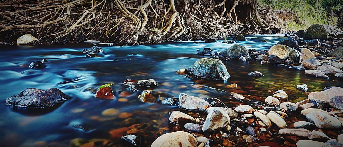Living River Check This Out Taking Photos Enjoying Life Landscape River Rock QLD Flowing Water Hinterland Fine Art Photography