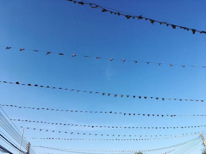 Flags line sky