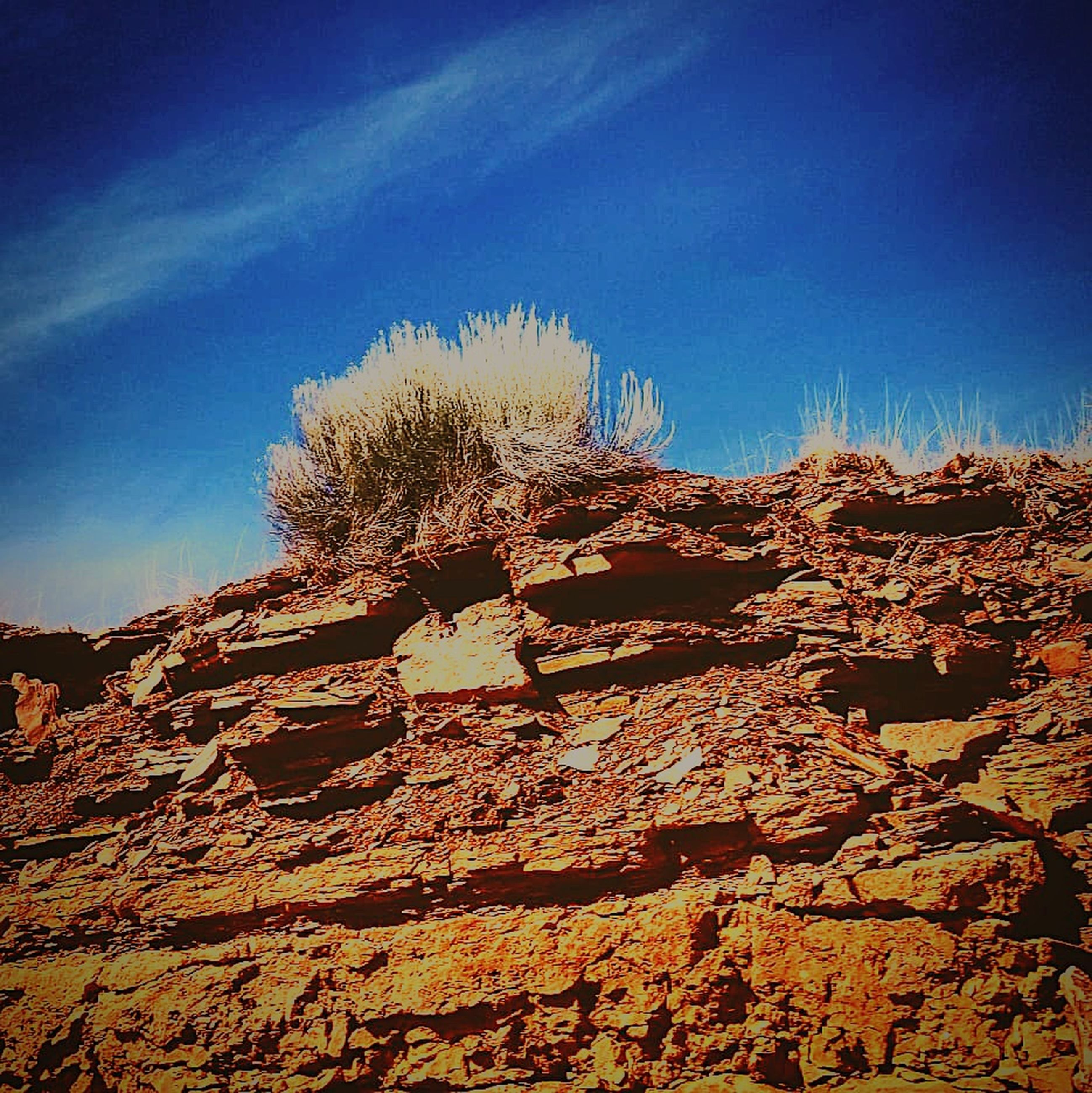 sky, rock, blue, rock - object, scenics - nature, nature, solid, beauty in nature, no people, tranquility, rock formation, tranquil scene, day, low angle view, clear sky, sunlight, non-urban scene, land, physical geography, geology, outdoors, eroded, formation, arid climate, climate