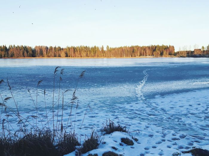 FRozEN LaKE ❄❄❄ Nature Frozen Winter Winterwonderland Landscape Vaidava Vaidavasezers Beauty In Nature Sky Cold Temperature Beauty In Nature Snow Latvijasdaba Latvija Water