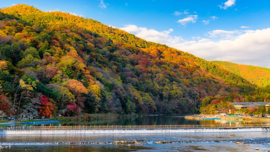 Autumn Water Tree Change Plant Lake Nature Scenics - Nature Beauty In Nature Tranquil Scene No People Sky Mountain Tranquility Day Reflection Non-urban Scene Forest Landscape Outdoors Fall Japan Kyoto Arashiyama Autumn