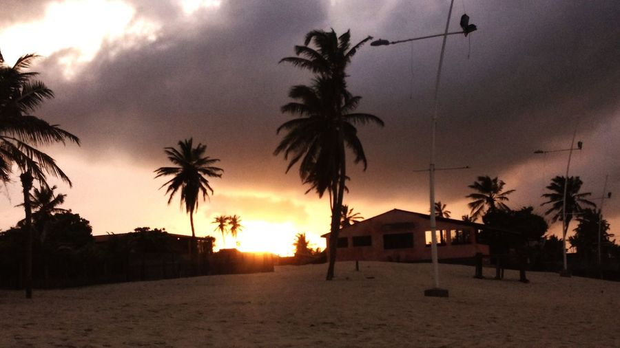 #fortaleza #NikonD5600 #nikonistas_espanha #nikonistas #EyeEmNewHere #vidalonga #d5600 #pordosol #Brasil Cumbuco #praia Tree Palm Tree Sand Silhouette Sky