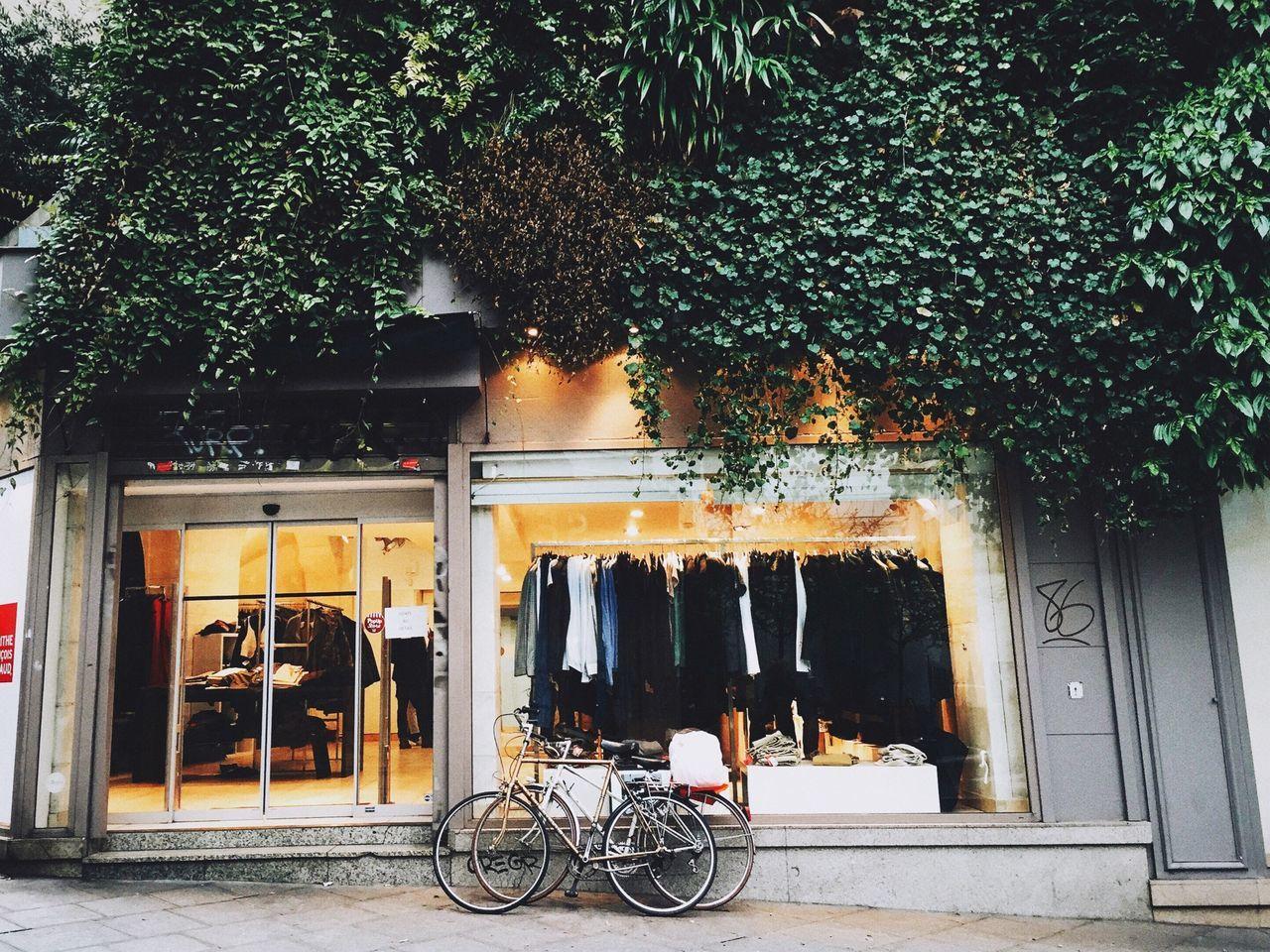 Clothing store lit up dusk