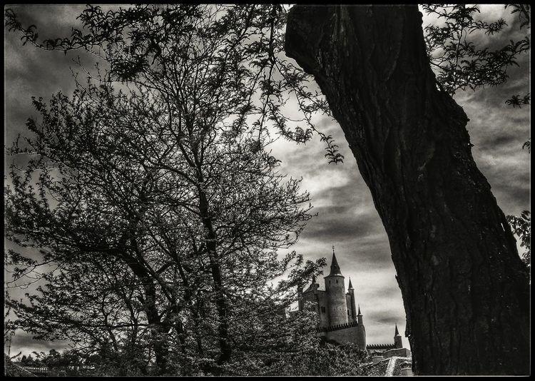 Alcázar Segovia Blackandwhite Photography Black And White