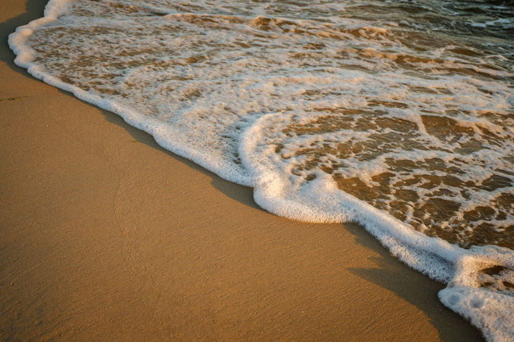 EyeEmNewHere Beach Beauty In Nature Close-up Day Nature No People Outdoors Sand Sand Dune Sea Shore Water Wave