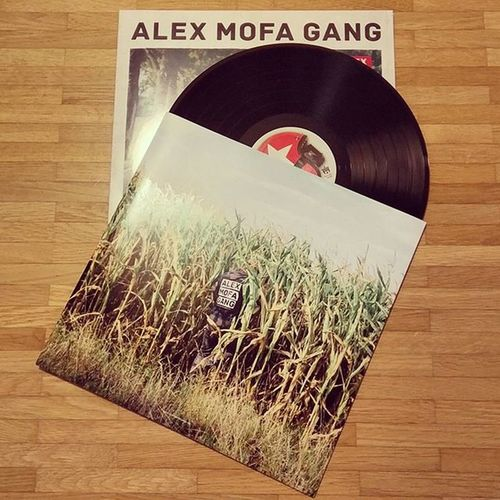 I admit I'm guilty. My first vinyl after maybe 25 years? Thanks to @AlexMofaGang, it also came with a CD! 🎶 AlexMofaGang 1und1hwl Vinyl