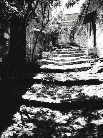 small village EyeEm Best Shots EyeEm Selects EyeEm Best Shots - Nature Lesbos Natural Structures Blackandwhite Stone Material Atmospheric Mood Mediteranean Close-up Still Life Backgrounds Pattern, Texture, Shape And Form Structures Shadows & Lights Small Village Greek Architecture Greek Village Greekstyle Tree Shadow Sunlight Pathway Empty Road Walkway