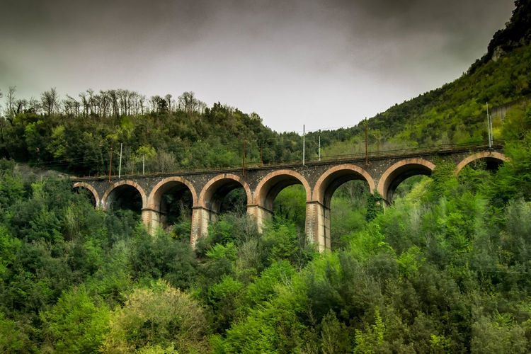 Low angle view railway bridge amidst trees against cloudy sky