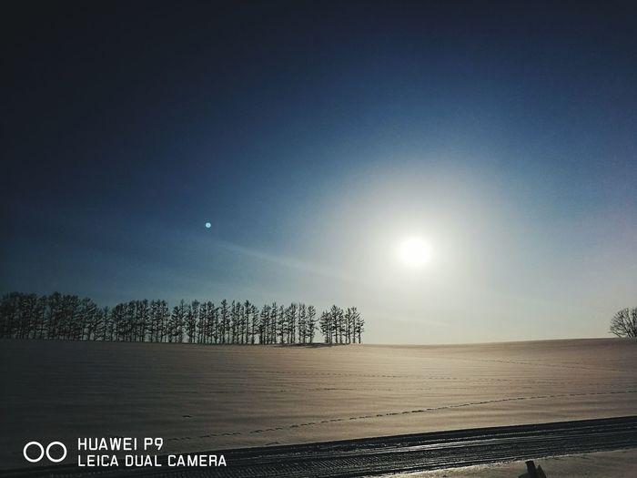홋카이도 비에이 마일드세븐언덕 Nature Beauty In Nature Sky