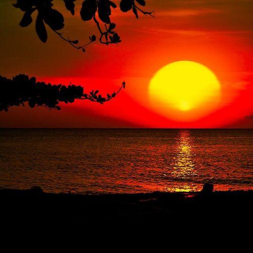 Sunsets_sxmrrcadz Ssreflections_01 Shutterbug_collective Sunsetsareonme Splendid_earth Sunset_in_bl Global_secrets Grenada Caribbean_beautiful_landscapes Color_n_nature Westindies_pictures Worldclassno_edit Ilivewhereyouvacation Ig_caribbean_sea Ig_caribbean Ig_grenada Amazing_allshots Anlatistanbul Amazingpics TheMagicHourLight Thebestpicsoftheearth Theworld_thru_youreyes Mybest_shots Master_shot