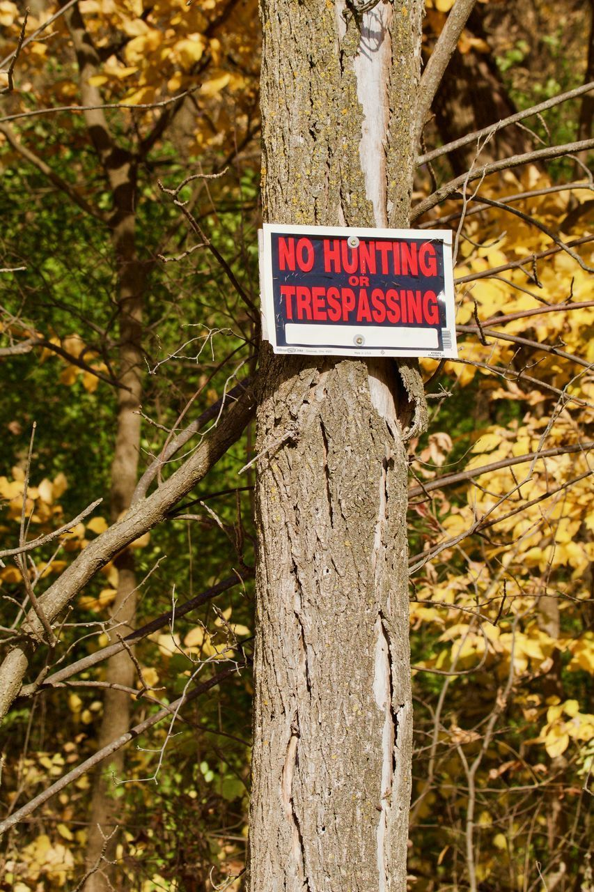 CLOSE-UP OF WARNING SIGN ON TREE TRUNK