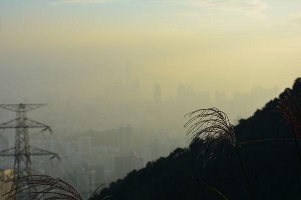 Cityscape Fog Hong Kong HongKong Lion Rock Lion Rock In Hong Kong Nature Smog