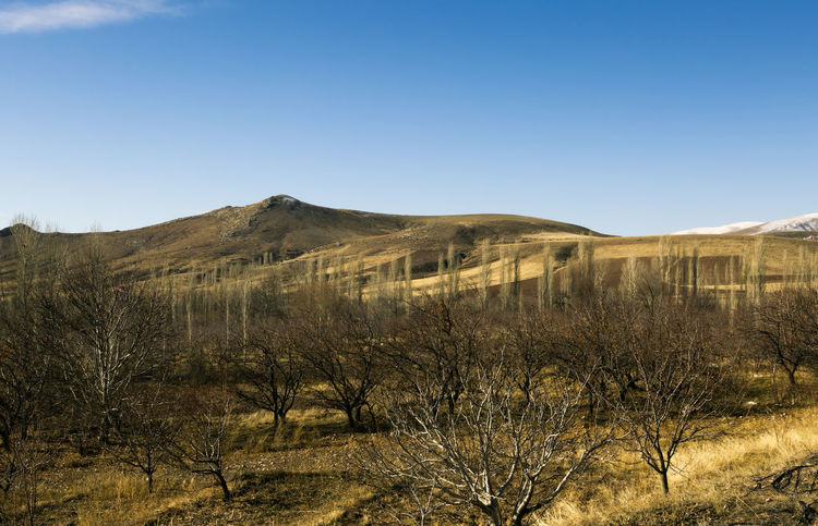 Turkish Landscape Beauty Clear Sky Cold Temperature Day Fields Landscape Mountain Nature Niğde Outdoors Sand Scenics Sky And Clouds Tree Trees Turkey Winter