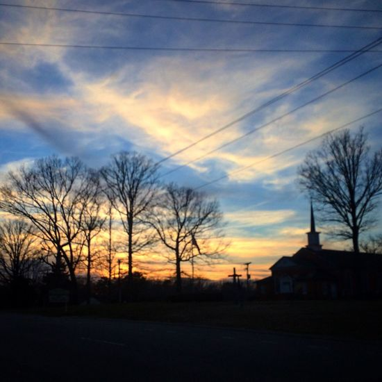 FabulousSunsets Silhouettes ObsessedWithTrees BecauseSometimesLeaves MakingUpForLostTime ImSorryINeglectedEyeEm March2016