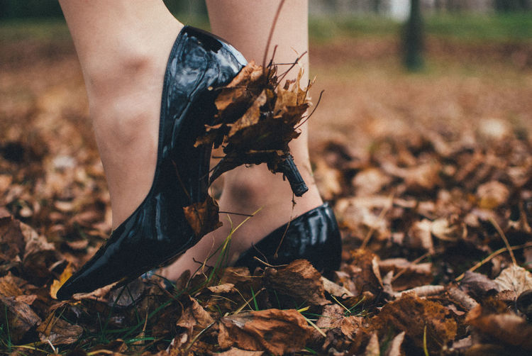 Low section of woman wearing high heels while standing on autumn leaves