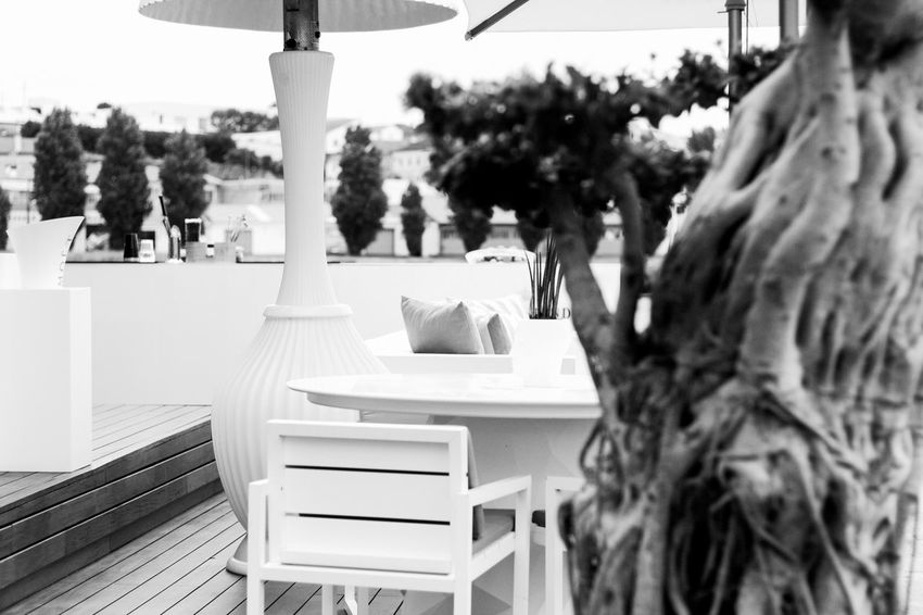 Close-up Day Focus On Foreground Nature No People Outdoors Tree 50mm Grain First Eyeem Photo Blackandwhite Beautiful City River Streetphotography Firstpicture Terrace in Vila Do Conde