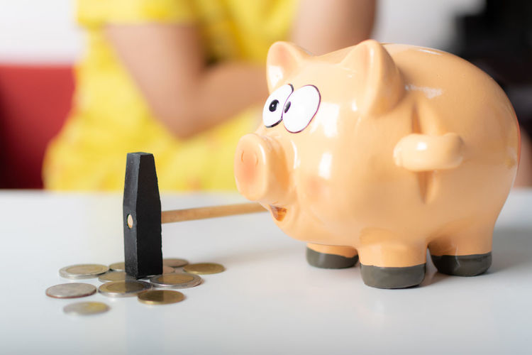 Piggy Bank Investment Indoors  Savings Finance Business Currency Wealth Representation Home Finances Coin Bank Toy Coin Planning Senior Adult Yellow Banking Economy Making Money Dollar Sign
