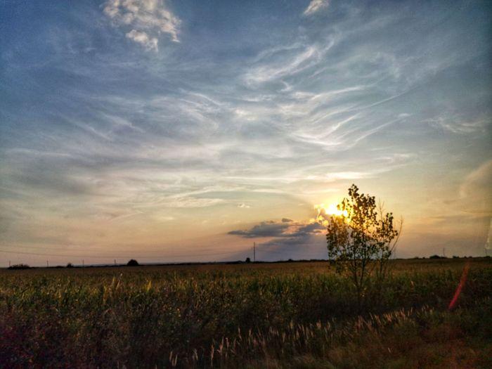 Sunset 😊🌄