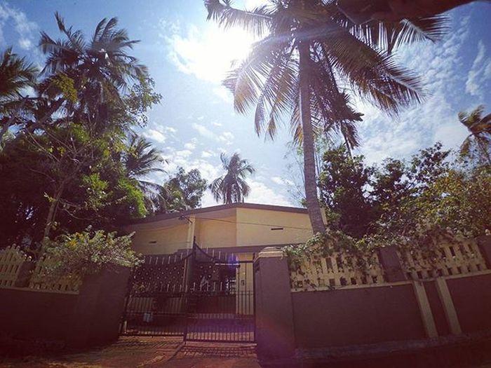 Kerala GodsOwnCountry Nature Skies Bluesky Xiaomiyicamera Yicamera Actioncamera Sportscamera