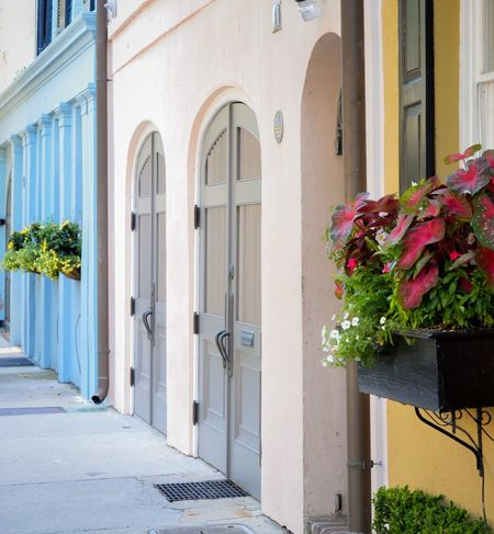 Houses in Eyem Nature Lover Eyem Gallery Colorful Houses Colorful City Flower Building Exterior Architecture Built Structure Growth Plant Day Window Outdoors No People Window Box