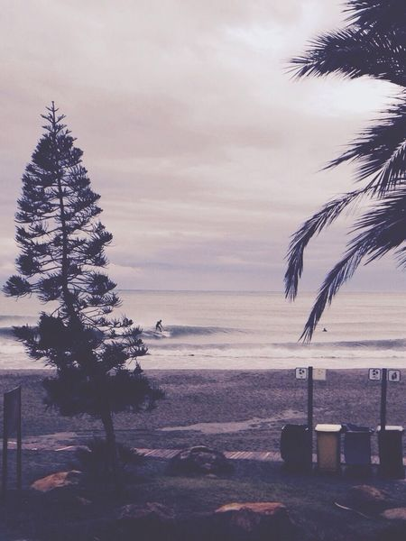Surfing Earlysessions CostadelSol