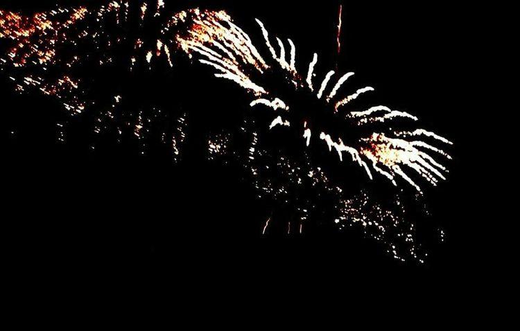 Fireworks Fireworksphotography Fireworks In The Sky Fireworks! Firework Fireworks🎆 Fireworks Photography Fireworksnight Independence Day Fourth Of July 🎉 Fourthofjuly Eyem Fourth Of July! 4th Of July Fourth Of July Fireworks❤ Fireworks On Forth Of July Fireworks Display Eyem Best Shots Hanabi Fireworkshow Fireworksdisplay Fireworks!!Fireworks Festival Fireworks(:
