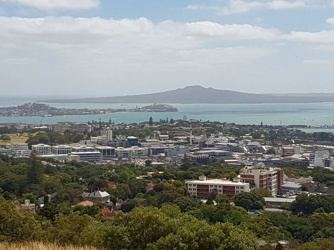 City Cityscape Architecture Tree Business Finance And Industry Social Issues Government No People Outdoors Urban Skyline Day Auckland Rangitoto Island Waitemata Harbour