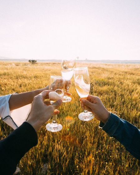 Cropped hands of friends toasting champagne flutes on field against sky