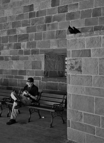 Moments from Manhattan Man On Phone The Street Photographer - 2018 EyeEm Awards Birds Blackandwhite Brick Wall Built Structure Man Alone Man On Bench One Person Stone Wall Two Birds