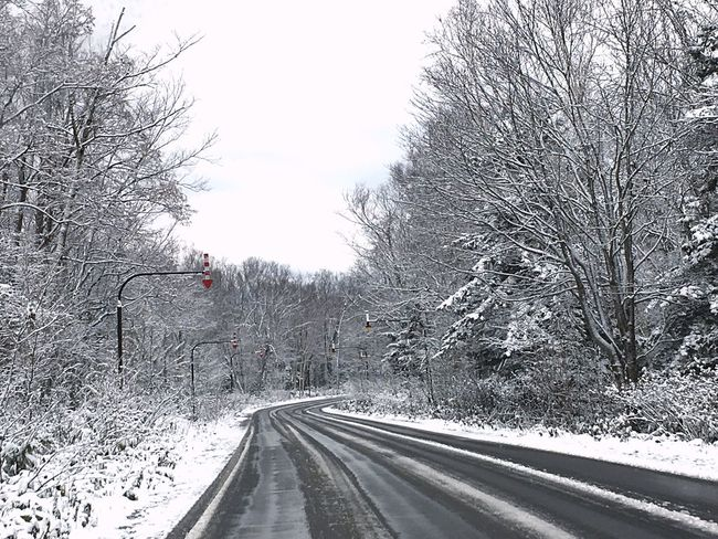 EyeEm Cold Temperature Winter Snow Tree Transportation Weather Road The Way Forward Nature Snowing Outdoors Frozen Beauty In Nature Sky Country Road EyeEm Gallery Eyeemgallery EyeEm Best Shots Eyeemphotography Eye4photography  EyeEmBestPics Beauty In Nature EyeEmbestshots Traveling