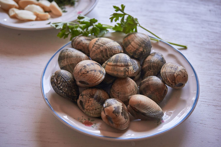 High angle view of shells in bowl on table