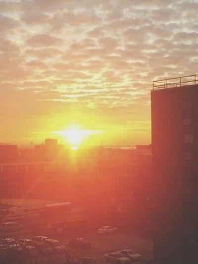 God's morning glory