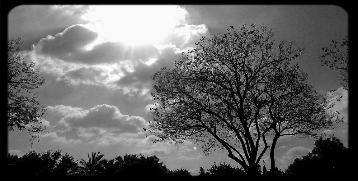 Sunsetsunrise_photo Sunrise... Sunset #sun #clouds #skylovers #sky #nature #beautifulinnature #naturalbeauty #photography #landscape Shadows & Lights